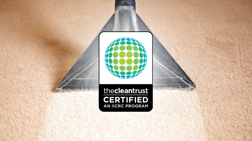 Dimby Carpet Cleaning For 3 Rooms Of Carpet